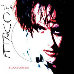 THE-CURE-Bloodflowers-2LP-Picture-disc-Vinyl-RSD-2020-NEW