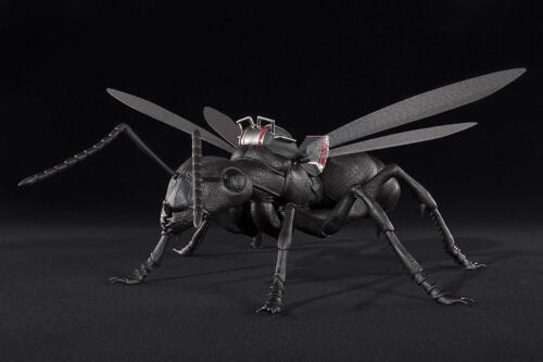 MARVEL Ant-Man and the Wasp S.H.Figuarts AntMan /& Ant Set Bandai Tamashii Figure