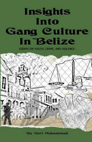 Insights Into Gang Culture In Belize  Essays On Youth Crime And  Stock Photo Topics For Argumentative Essays For High School also Writing Services Charges Fees Per Hour  Freelance Writing Service
