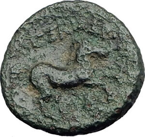 ALEXANDER-III-the-GREAT-Lifetime-336BC-Ancient-Greek-Coin-APOLLO-amp-HORSE-i64394