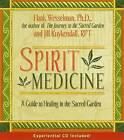 Spirit Medicine: Healing In The Sacred Realms by Hank Wesselman (Hardback, 2004)
