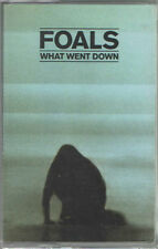 FOALS - What Went Down Cassete Store Day Tape - SEALED new copy CSD