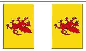 Somerset New Design British County 9 metre long, 30 flag bunting