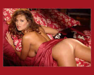 Opinion you playmate lindsey vuolo nude