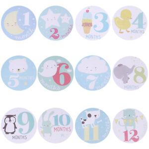 1-12-Months-Baby-Bodysuit-Stickers-Baby-Boy-Photo-Shirt-Shower-Gift-Keepsakes