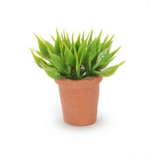 Darice Timeless Miniatures House Plant 2314-21
