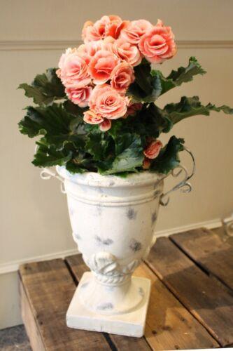 Gartendekoration Shabby Blumentopf Übertopf Pokal Vase Ton Metall 33cm hoch