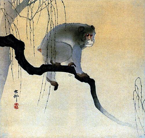 Monkey on Branch 22x30 Japanese Art Print by Koson Asian Art Japan