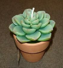 NEW BLOOMIN' CERAMIC POTTED GREEN CACTUS PLANT FLOWER CANDLE-76342
