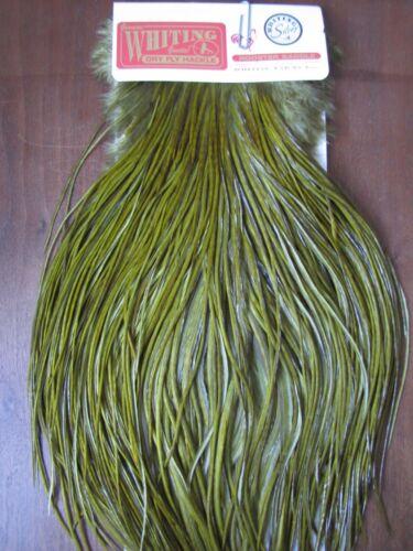 Fly Tying Whiting Silver Rooster Saddle White dyed Dark Olive #A Angelsport-Köder, -Futtermittel & -Fliegen Angelsport-Fliegen-Bindematerialien