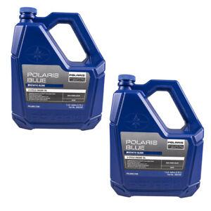 Polaris 2882202 2 Pack 1 Gallon Of 2 Cycle Premium