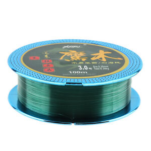100M-Super-Strong-Nylon-Fluorocarbon-Coating-Fishing-Line-Durable-Lake-Sea-Lines