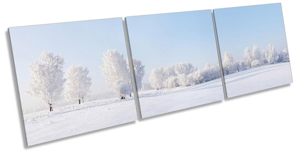 WINTER WINTER WINTER SNOW bianca PAESAGGIO incorniciato tela stampa Triple Wall Art ee9026
