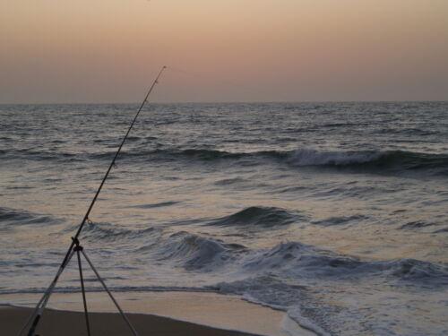 Fishing rod telescopic beach caster//catfish//carp//pike