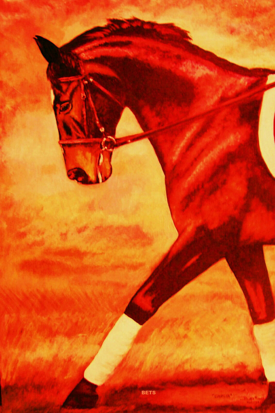 HORSE PRINT Giclee DRESSAGE  Art CAPER by artist BETS 7 COLORS print size 14 X 19  enjoy 50% off