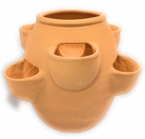 Pentola pianta in CERAMICA FRAGOLA Terracotta Fioriera Argilla vaso di fiori
