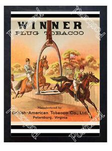 Historic-Winner-Plug-Tobacco-Horse-Jumping-Advertising-Postcard