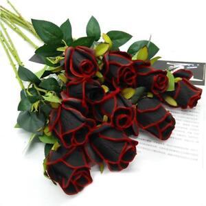50 st ck sch ne schwarze rose blume mit roten rand s mling samen ebay. Black Bedroom Furniture Sets. Home Design Ideas
