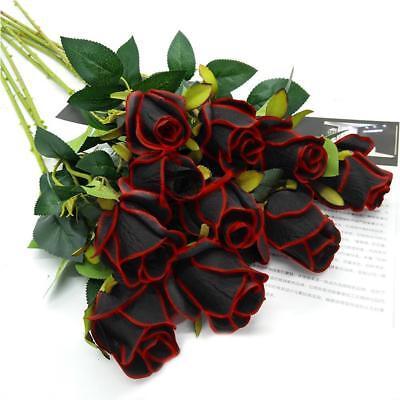 Schwarze Rose Kaufen