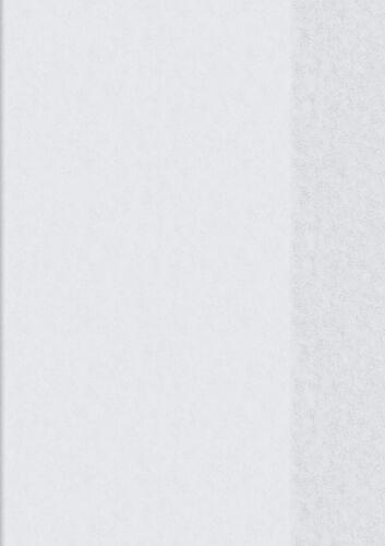 Brunnen  Idena  Hefthülle A6 transparent Folie 2 Stück