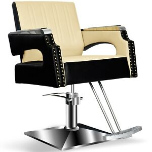 Salon Chair For Hair Stylist Barber Styling Beauty Spa Equipment 8817c 8429381029318 Ebay