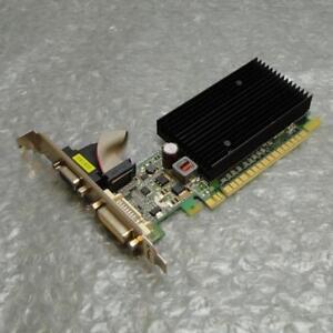 256MB-PNY-GeForce-8400-GS-DVI-VGA-PCI-e-Graphics-Video-Card-GM84W0SN2E24P-0TE