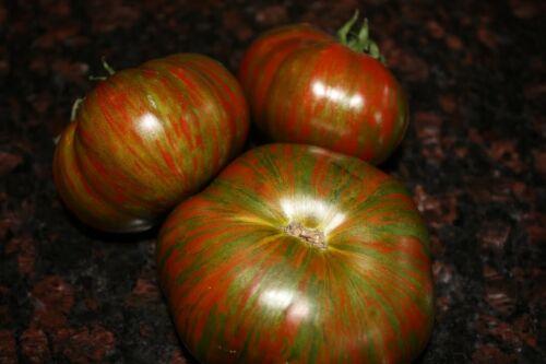NON-GMO Chocolate Stripes Tomato Variety Pack Sizes Rare Heirloom FREE SHIP