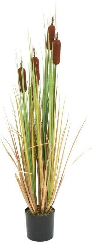 Europalms Massette, art plante, 150 cm