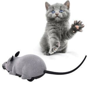 US-Remote-Control-Mouse-Rat-Wireless-Pet-Cat-Dog-Play-Interactive-Toy-Fun-Gift