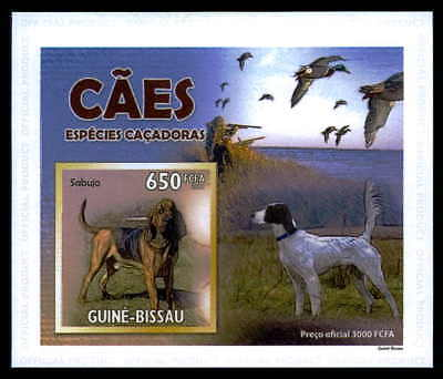 Kreativ Guinea-bissau Epreuve De Luxe Jagdhunde Hund Ente Dogs Ducks Deluxe Sheet Dr30