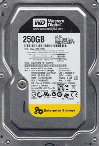 "WD RE3 WD2502ABYS 250GB 16MB Cache 7200RPM SATA 3.0Gb//s 3.5/"" Desktop Hard Drive"