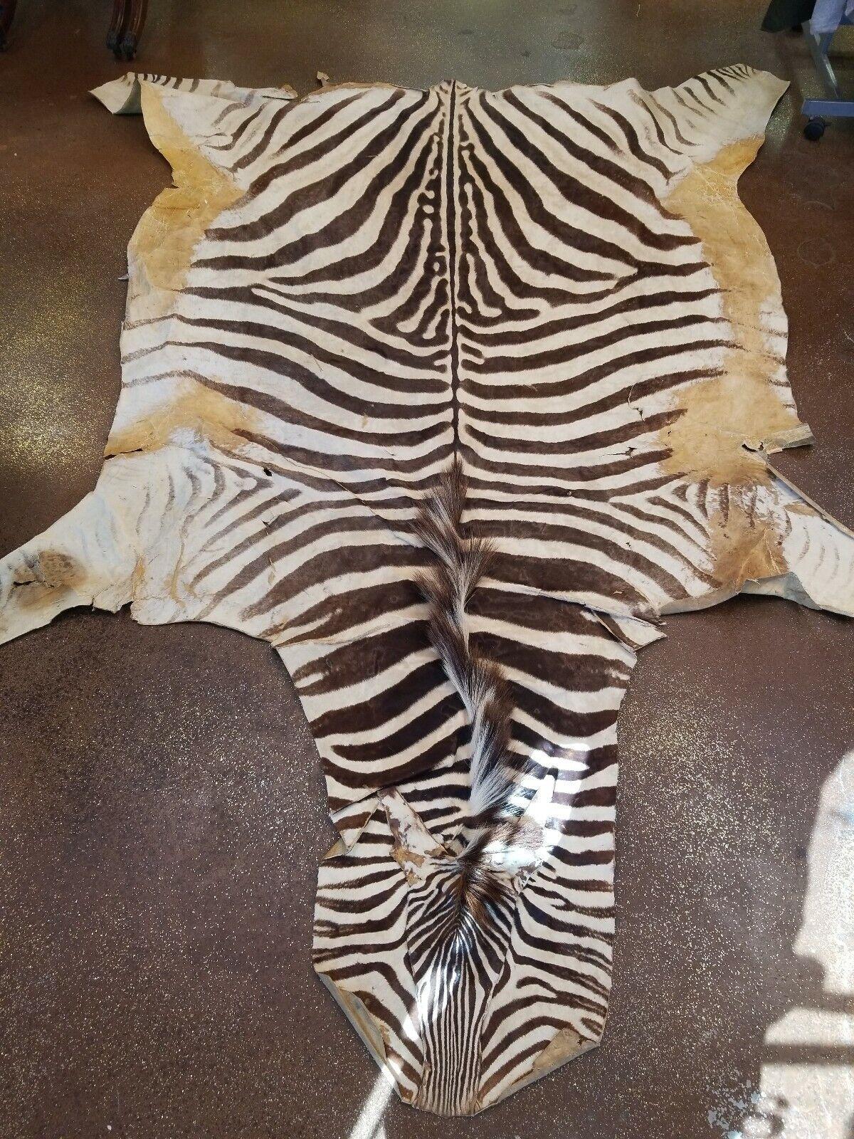 Authentic African Genuine Zebra Hide