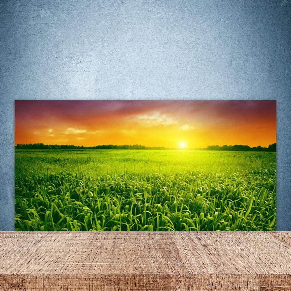 Vidrio Templado Cocina salpicaduras 100x50 cereal campo amanecer Floral