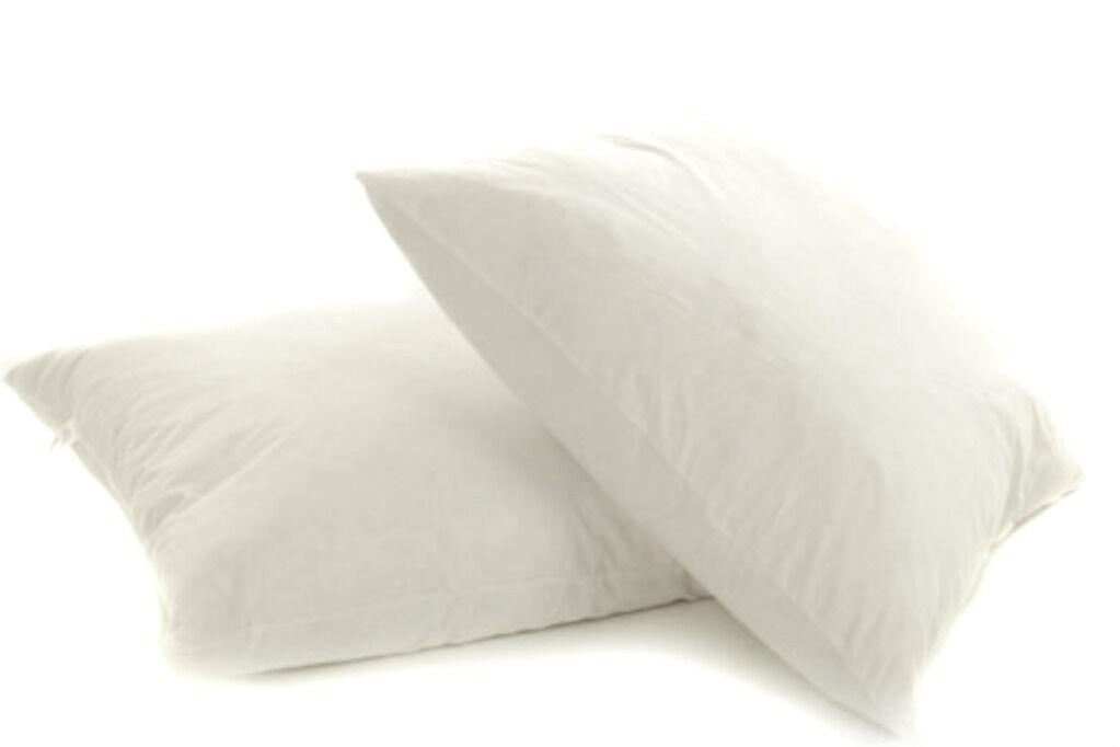 Sconto del 40% 10 10 10 Pack Bianco Piuma D'anatra Cuscino Pad Inserto a dispersione Filler Interno 22  x 22   marca
