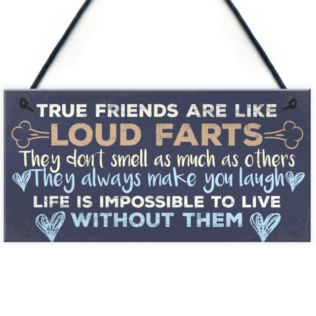 Funny Best Friend Friendship Plaques Shabby Chic Cute Thank You Birthday Gifts For Sale Online