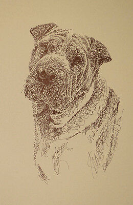 Chinese Shar Pei Dog Art Portrait Print #74 Kline will add dogs name free. GIFT