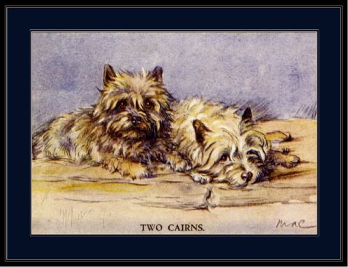 English Picture Print Cairn Terrier Puppy Dog Duo Art