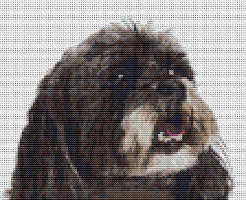 "20 x 16 cm Lhasa Apso Dog Counted Cross Stitch Kit 8/"" x 6.5/"" d2492-38"