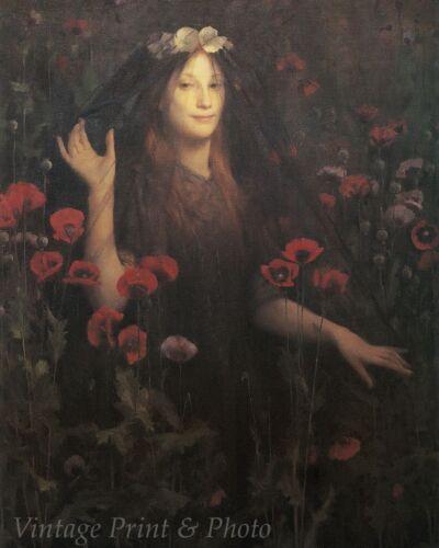 Woman Black Veil Poppies Gothic Art Death Bride by T C Gotch 8x10 Print 0255