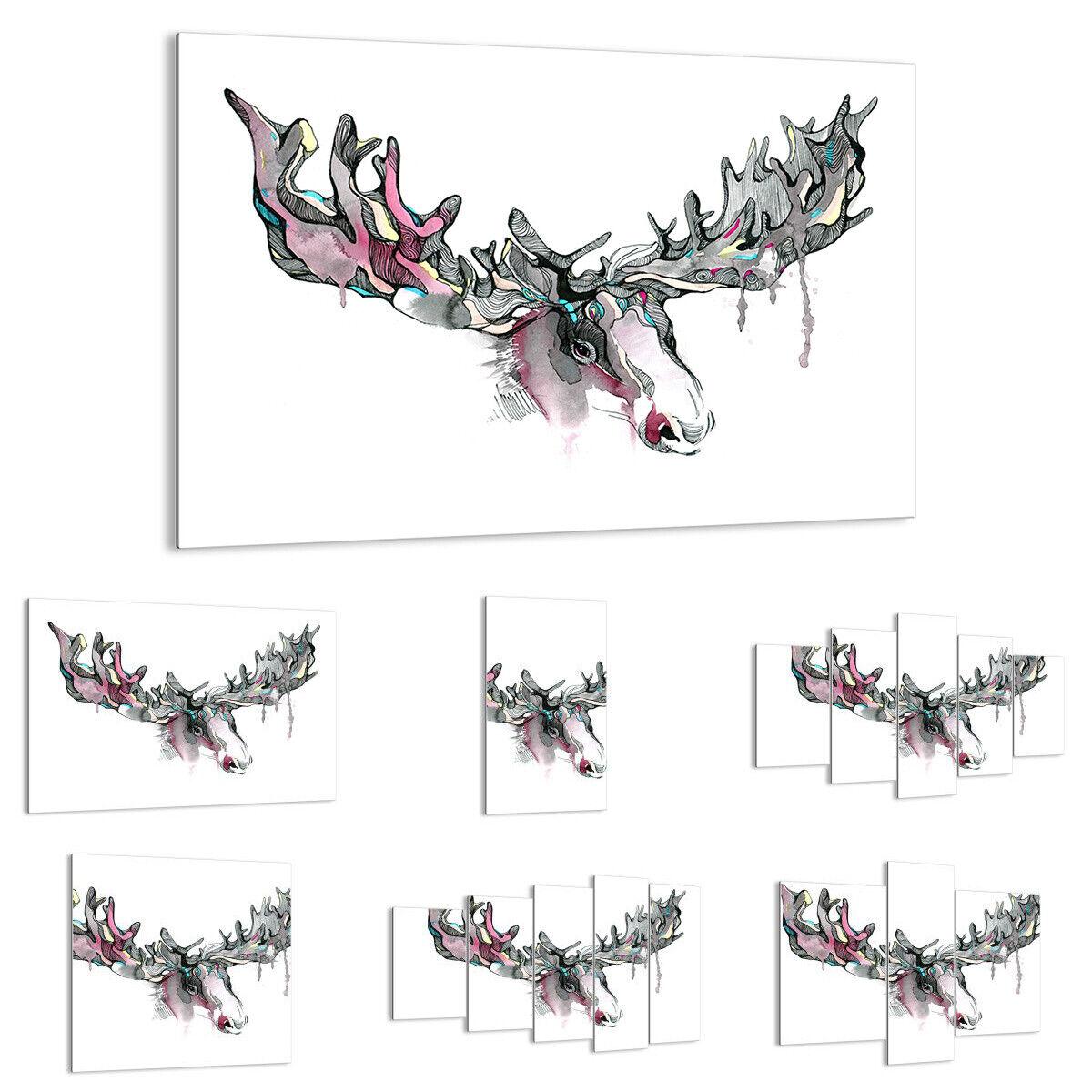 GLASBILD Wandbild Deko Moose Bunt Kopf Abbildung 3033 DE
