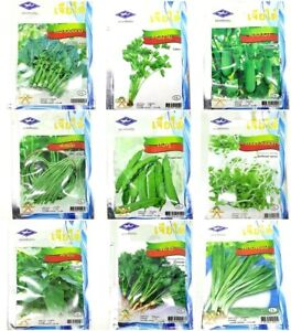 ChiaTai-Vegetable-Garden-Seeds-Pure-Natural-Organic-Wholesale-Plant-Quality-1