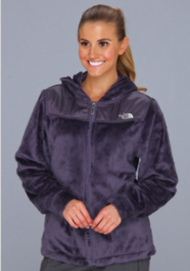 cf821fd30e28 North Face NWT Womens Greystone Blue Oso Osito Soft Fleece Jacket ...