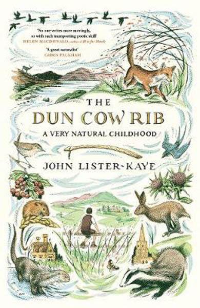 The Dun Cow Rib: A Very Natural Childhood   John Lister-Kaye