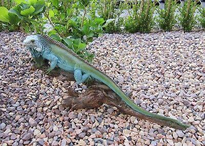 Kreativ Echse Garten Deko Figur Ca. 52 Cm Leguan Waran Reptil Lebensecht Skulptur Teich Stabile Konstruktion