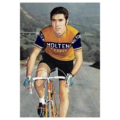 Men/'s Cycling Jersey 1973 Eddy Merckx Pink Molteni Retro T Shirt