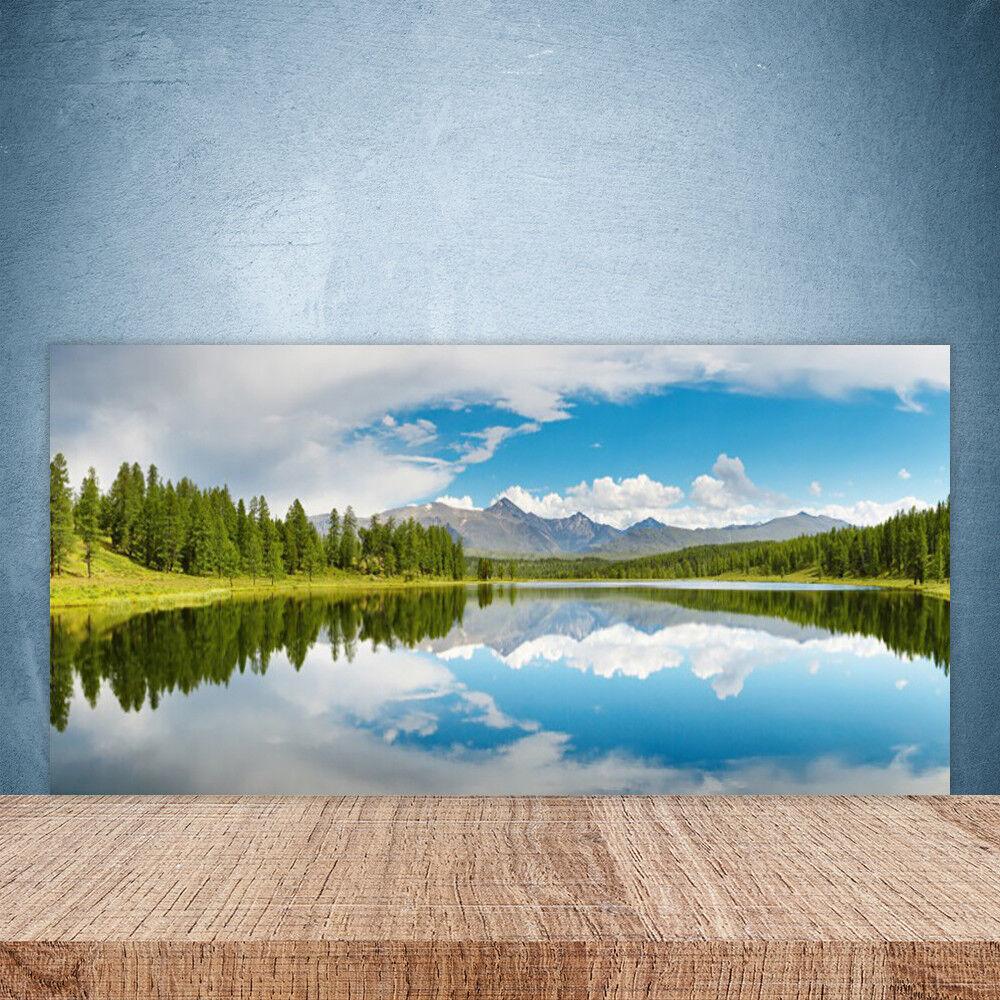 Crédence de cuisine en verre Panneau Paroi 100x50 Paysage Forêt Lac