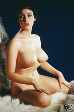 Marie Deveraux Vintage  Large Breasts Pinup 8  x  10  Photograph