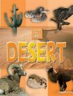 What Can I See?: Desert by Octopus Publishing Group (Paperback, 2014)