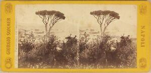Italia Panorama Da Napoli c1865 Foto Sommer Stereo Vintage Manzo-Bianco