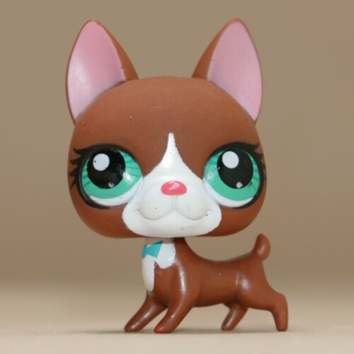 LPS littlest PET SHOP #3174 Boston Terrier